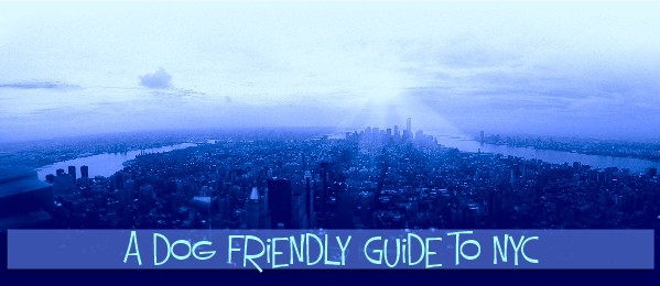 Wagging New York A Dog Friendly Guide-places to take your dog in NYC