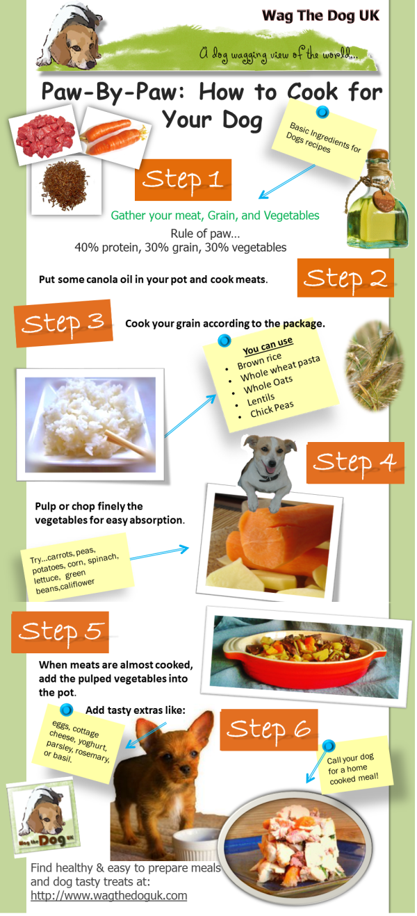 Infograph Paw By Paw How To Cook For Your Dog In 6 Easy