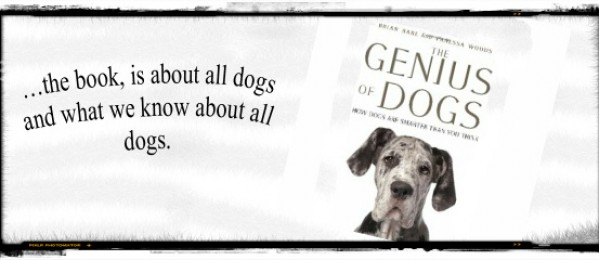 CRITTER COMPANIONS: The Genius of Dogs a fascinating read