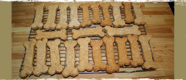 3 Great Recipes for Homemade Pet Treats - Get Cooking!