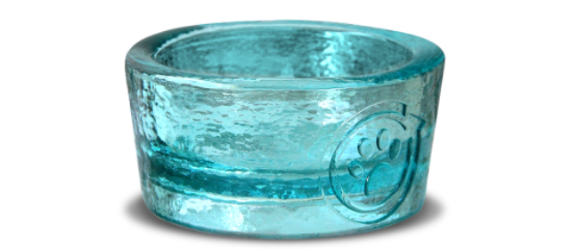 Paw Nosh Pet Bowls...Wag Cool Class with Glass