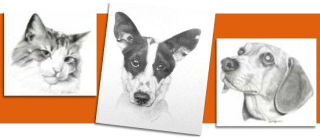 Beautiful Illustrations of Your Furry Friend by Shan Hoffmann