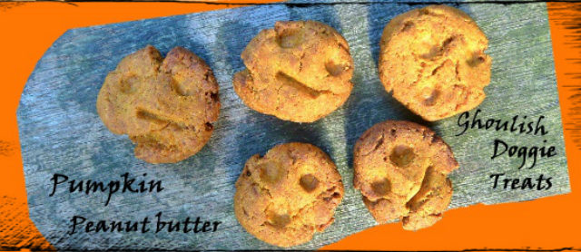 Autumn Dog Treats -Pumpkin Peanut Butter Bites