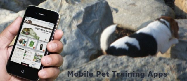 Mobile Pet Training Apps - How To Prevent Accidents With Well Behaved Pets