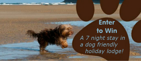 Enter to win a Dog Friendly Holiday with Retallack Resort & Spa