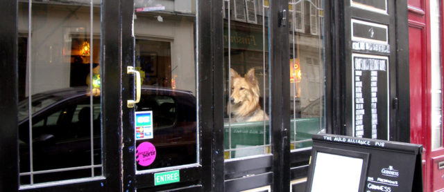 How to take your Pet Pooch to Paris