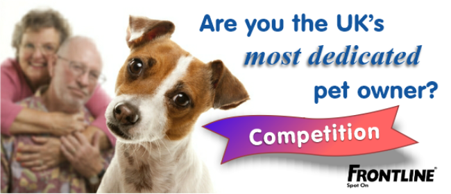 [Spot On] Most Dedicated Pet Owner Frontline Photo Competition