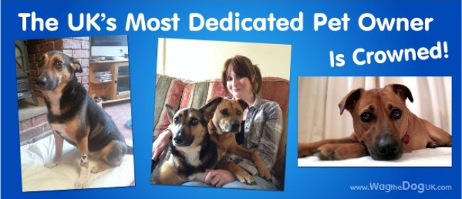 The UK's Most Dedicated Pet Owner Is Crowned!