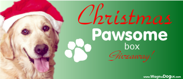 Pawsome Box Christmas Giveaway & Discount