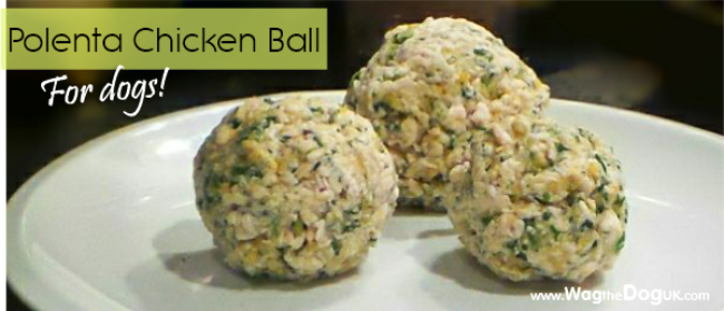 Polenta Chicken Ball For Dogs [Homemade Dog Food Recipe]