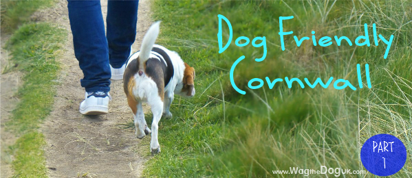 Part 1:  On My Way To Dog Friendly Cornwall