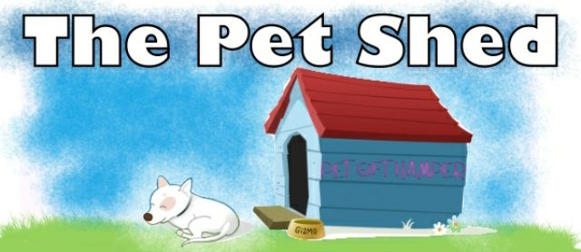 Calling All Lucky Cats and Dogs -Pet Gift hampers for all
