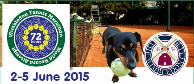Wimbledon Tennis Marathon Ball Dog Must See Event