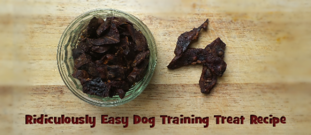 Kidney Crisps: A Ridiculously Easy Dog Training Treat Recipe