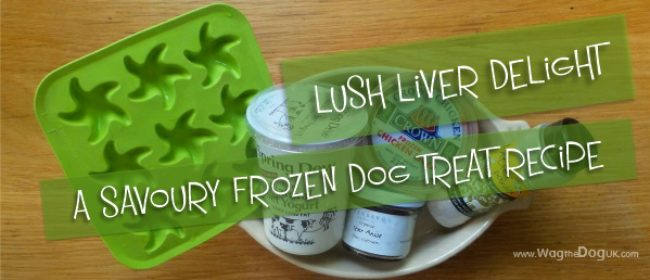 Savoury Frozen Dog Treat Recipe - A Lush Liver Delight