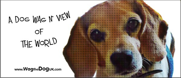 A Dog Wag N View Of The World [101]