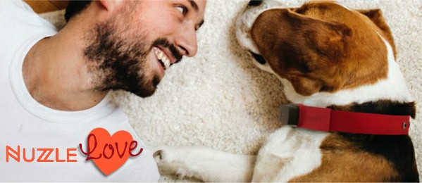 A Wag Cool GPS Tracking Collar - Nuzzle Love