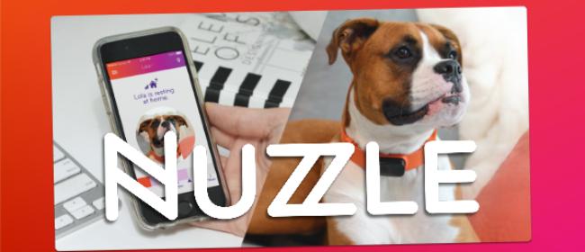Nuzzle -GPS Collar & Indiegogo Campaign