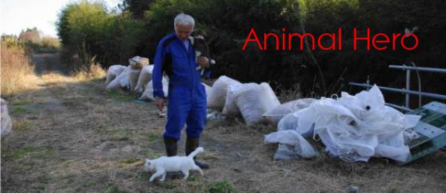 Animal Hero [Giving Tuesday] & Mr. Matumura