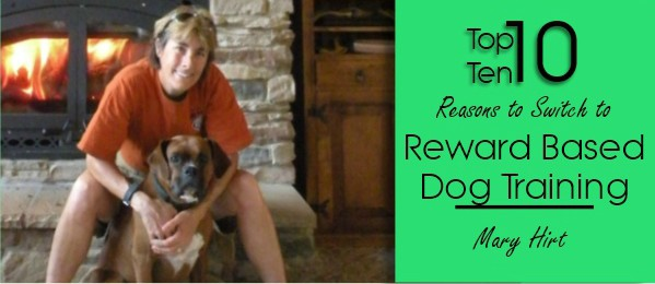 Top 10 Reasons to Switch to Reward Based Dog Training Today