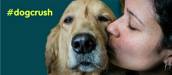10 Signs That You Have A Dog Crush