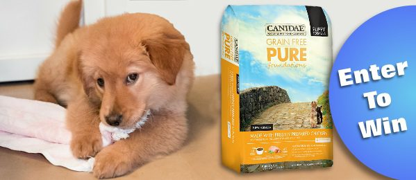 Canidae Puppy Food Giveaway