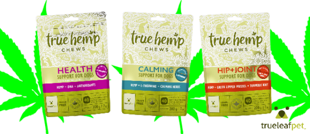 A Yummy Natural Treat With Benefical Hemp