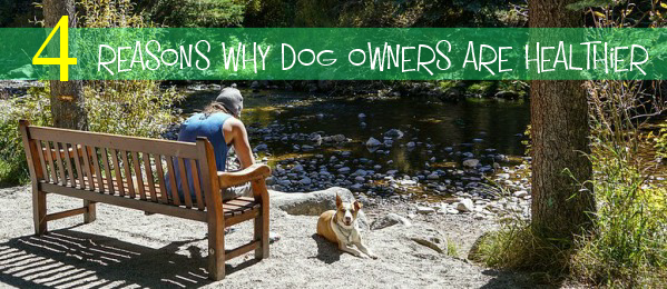 Four Reasons why Dog Owners are Healthier than Non-Dog Owners