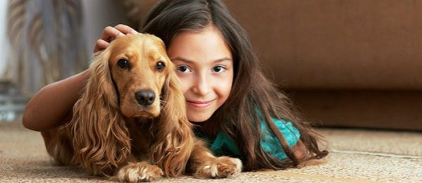 Easy Ways to Save Money on Dog Care