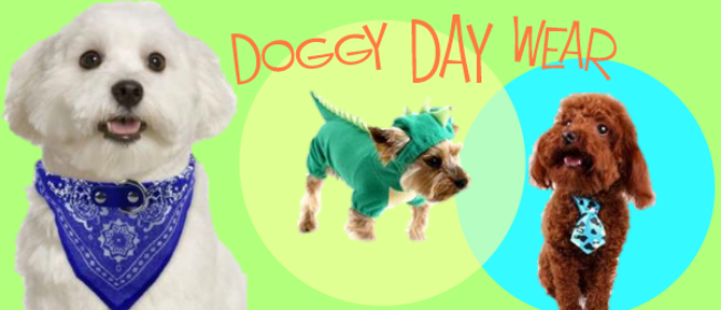 Doggie Day wear - Popular By Me and My Dog Show