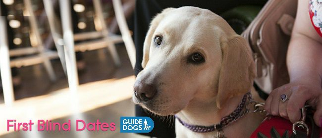A New Video Campaign From Guide Dogs - First Blind Dates