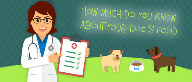 Pet Food? -How Much Do You Know About Your Dog's Food?