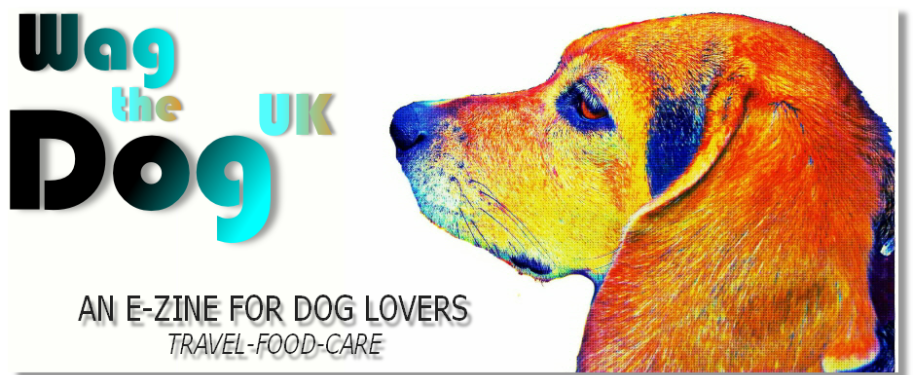 Wag The Dog UK is an online e-zine for the best dog friendly travel ideas