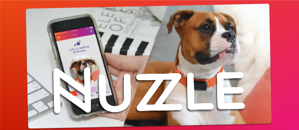 Nuzzle Dog Collar Review