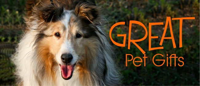 Looking For Great Pet Gifts To Buy For Your Dog This Year?